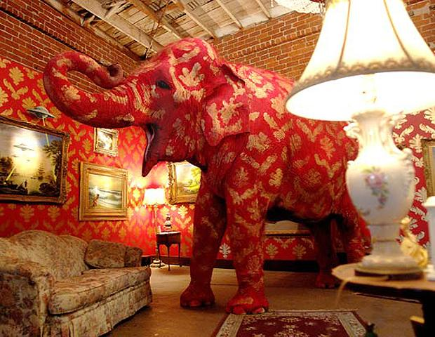 elephant in the room by banksy